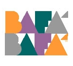 Professional Version of BaFa' BaFa'