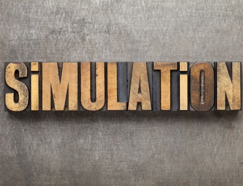 A Taxonomy of Simulation-Related Activities